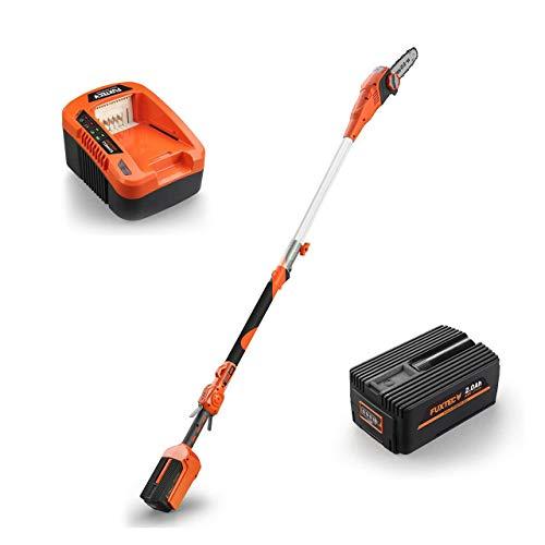 FUXTEC 40V 8Zoll Akku Hochentaster E608D Set inkl. 2Ah EP20 Akku mit Samsung-Zellen und Ladegerät E...